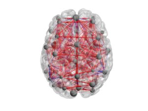 Brain Topographical Factor Analysis